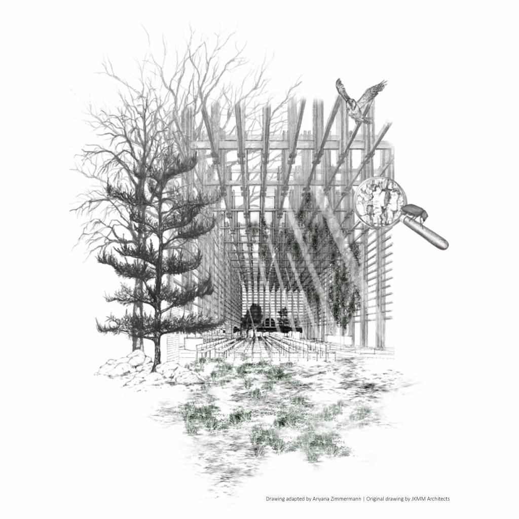 Drawing adapted by Anyana Zimmermann | Original drawing by JKMM Architects